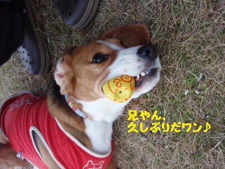 022_convert_20121227214409.jpg