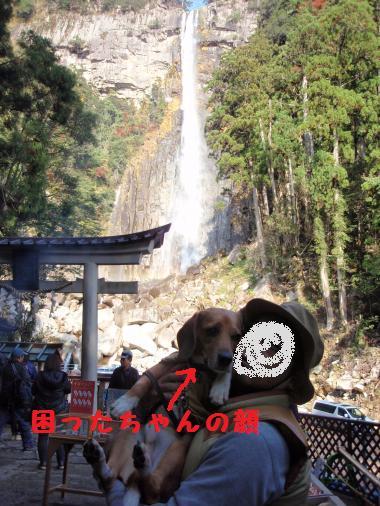 039_convert_20121208192846.jpg