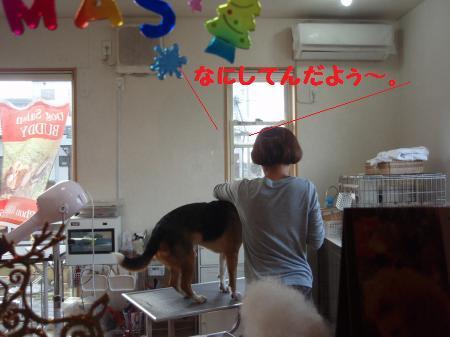 040_convert_20130104210027.jpg
