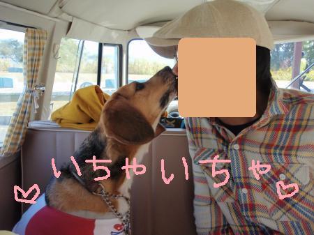 056_convert_20121119224028.jpg