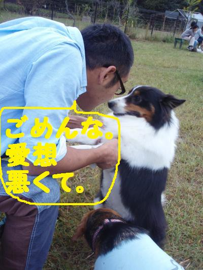 068_convert_20121020200405.jpg