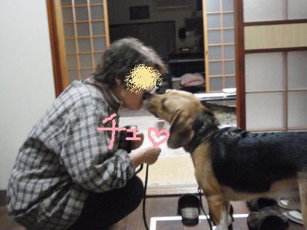 072_convert_20130106161344.jpg
