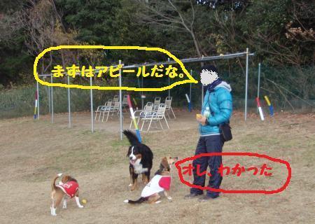 017+-+繧ウ繝斐・_convert_20121228232724