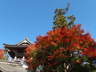 高尾山薬王院の紅葉