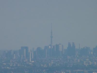 高尾山から見た東京スカイツリー