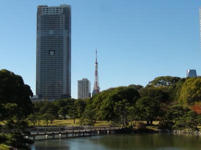 浜離宮恩賜公園から見た東京タワー