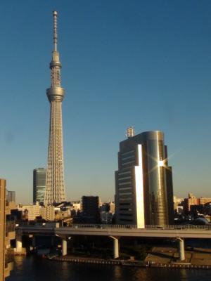 浅草ハレテラスから見た東京スカイツリー