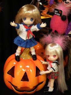 かぼちゃに乗りたい赤。