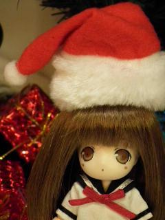 クリスマスパーティーに行きたい猫妹。