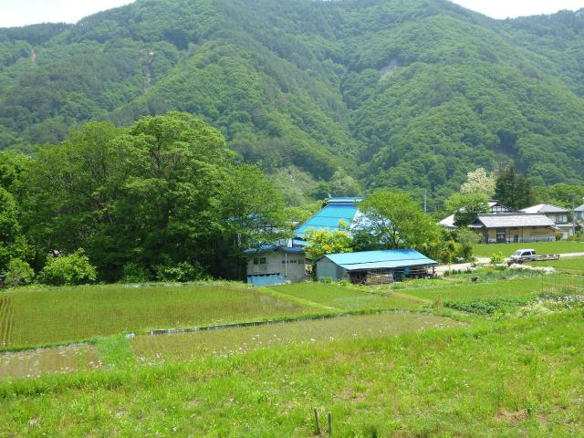 hikozaemonn2 (2)