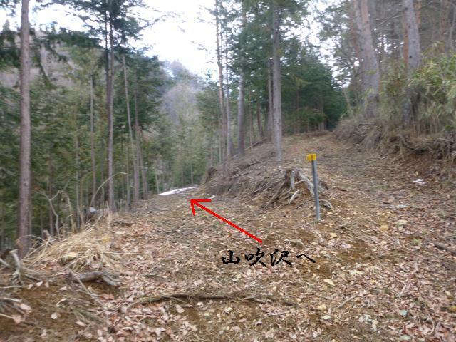 yamabukikozyou1 (5)