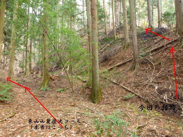 nakanokoya3 (7)