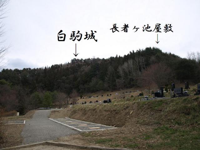 cyouzyagaike18.jpg
