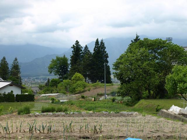 hanaokayakata1.jpg