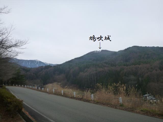 hatofuki56.jpg
