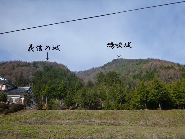 hatofuki72.jpg