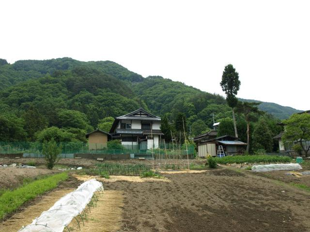 ikusakakoyasiki8.jpg