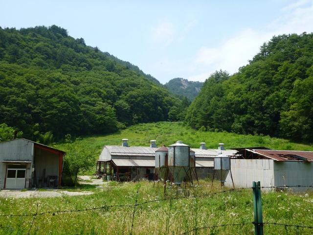 maruyama099.jpg