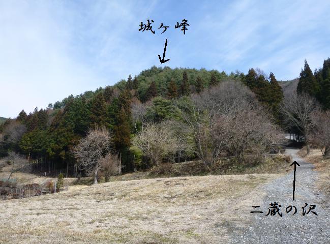 ohachi18.jpg