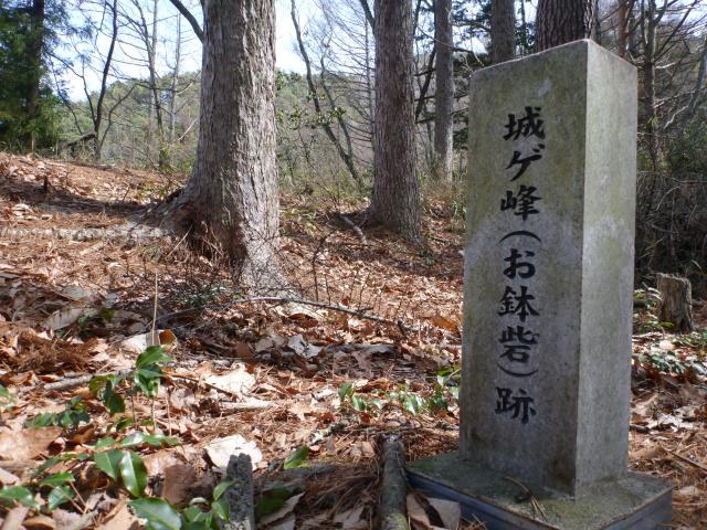 ohachi44.jpg