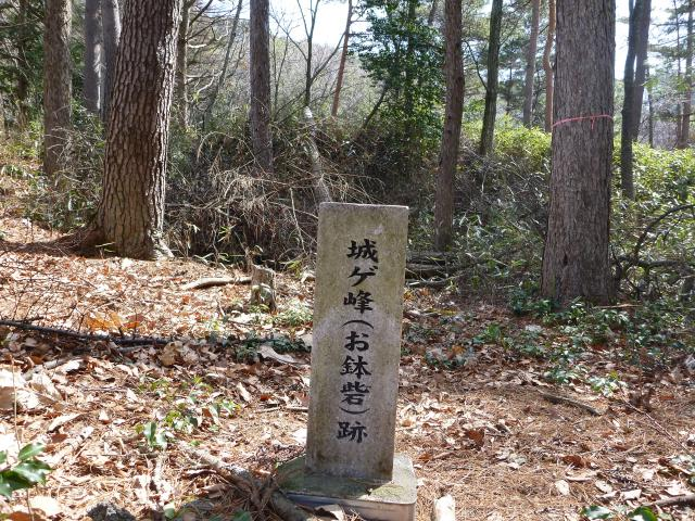 ohachi47.jpg