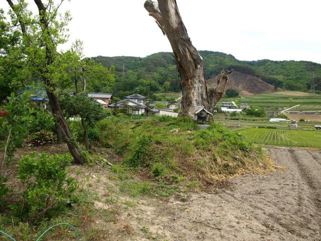 sibutamisiyakata111.jpg