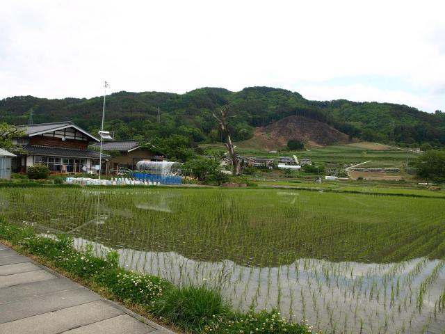 sibutamisiyakata17.jpg