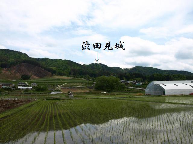 sibutamisiyakata5.jpg