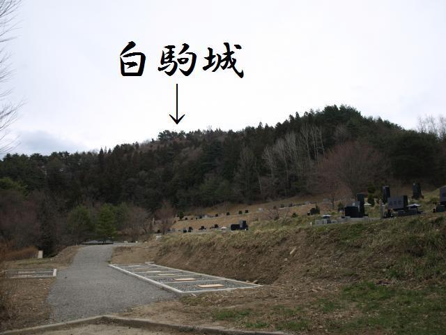 sirokomasiro3.jpg