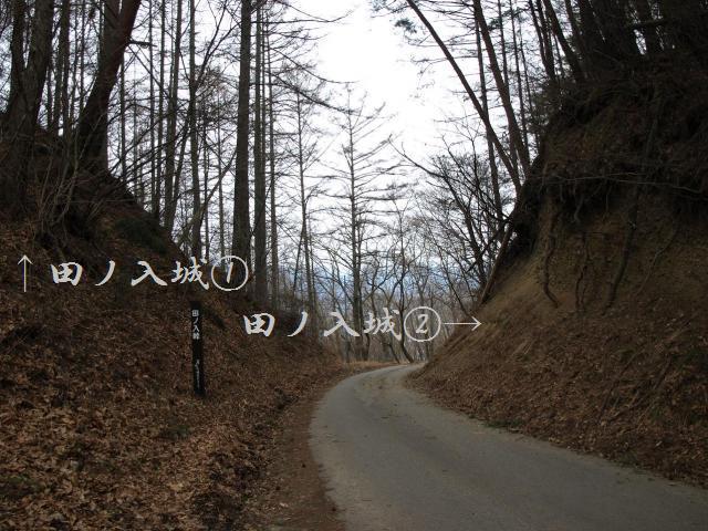 tanoiri2999.jpg