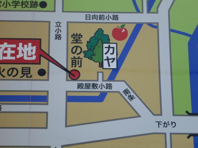 uenohira114.jpg