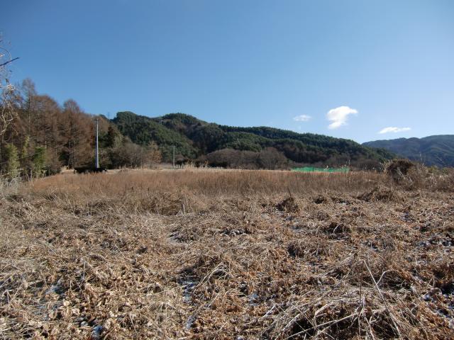 uenohira21.jpg