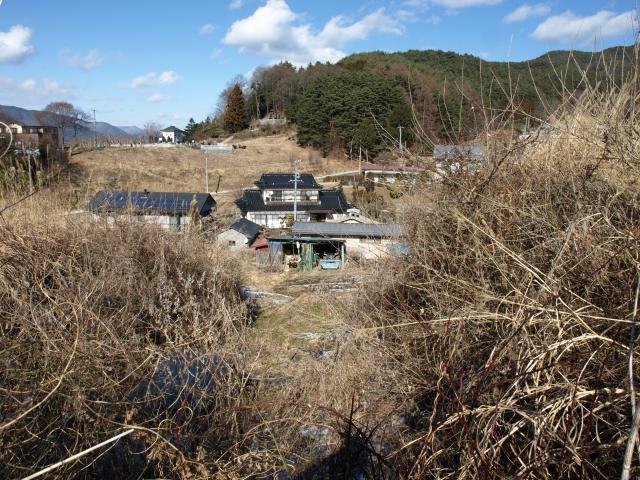 uenohira93.jpg