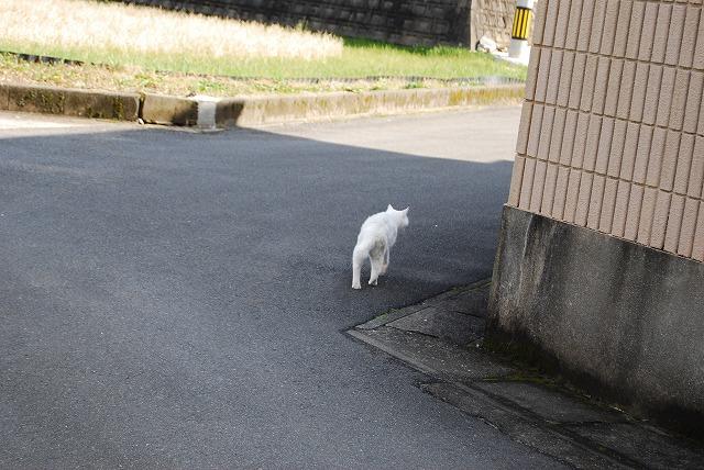歩こう~♪♪