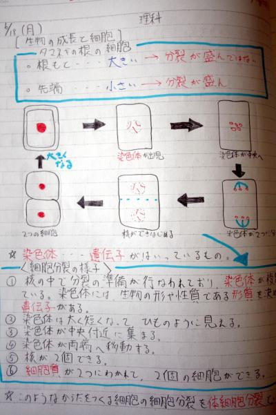 参考書を写すだけでなく、図を ... : 漢字 5年生 : 漢字
