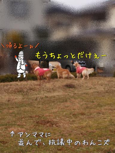 DSC_2393.jpg