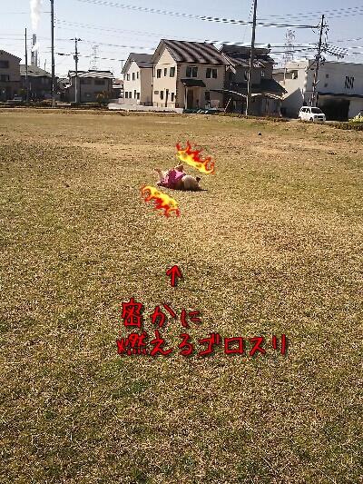fc2_2013-03-12_16-08-22-410_20130312161251.jpg