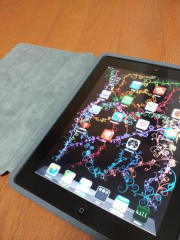 iPadSmartCase011.jpg