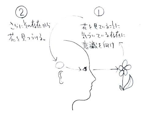 視覚002