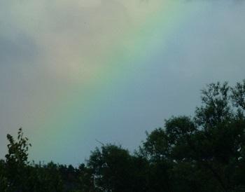 P1200284虹