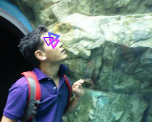 snap_panipuri_20128115159.jpg