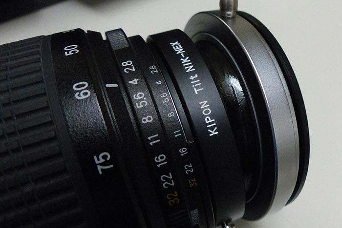 P1130520.jpg