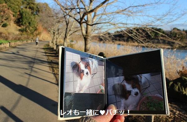048-2_20121219185608.jpg