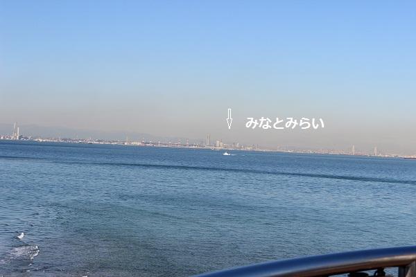 096-2_20130130202536.jpg