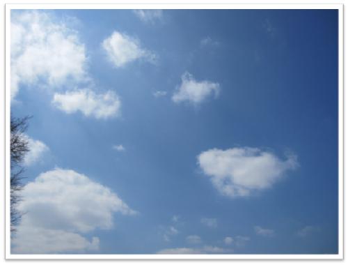 あ、レオちゃん雲♪