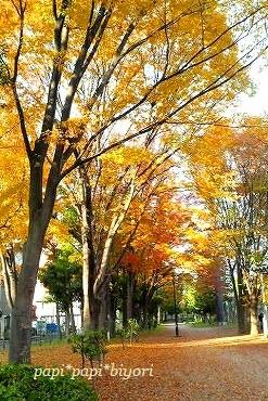 秋色の公園で・・・