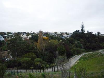 Newmarket park