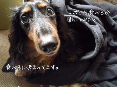 20120516_04.jpg