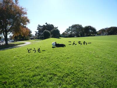 20120520_03.jpg