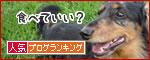 blogranking_20120426.jpg